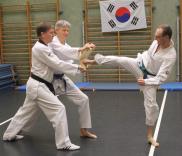 Taekwondo Heppenheim Bergstrasse Bruchtest TVH
